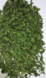 China AD Dehydrated Parsley Leaf 2018 New Crop with ISO, HACCP, FDA certificates supplier