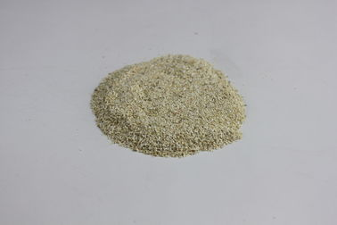 China Dehydrated Horseradish Root Powder Healthy Spicy Taste ISO Approval factory