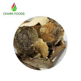 China Gourmet Food Dried Oyster Mushrooms Grade B Dried Wild Mushrooms factory