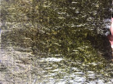 China 19x21CM Wasabi Flavored Seaweed , Dried Sushi Nori Seaweed Sheets factory